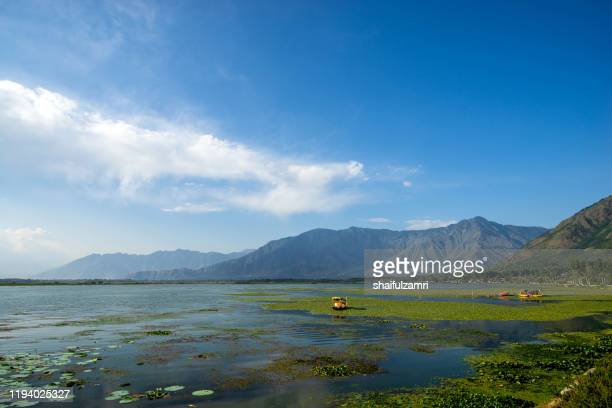 view of dal lake, kashmir,india with mountain range as background. - shaifulzamri photos et images de collection