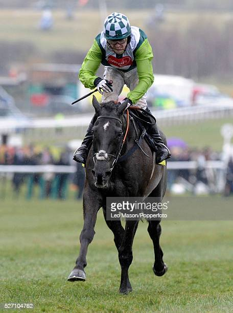 View of Denman ridden by Tony McCoy approaching the finish line in second place in the 2010 Totesport Cheltenham Gold Cup during the Cheltenham...