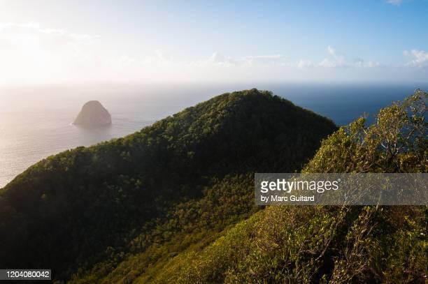 a view of diamond rock from morne le larcher, le diamant, martinique - isla martinica fotografías e imágenes de stock