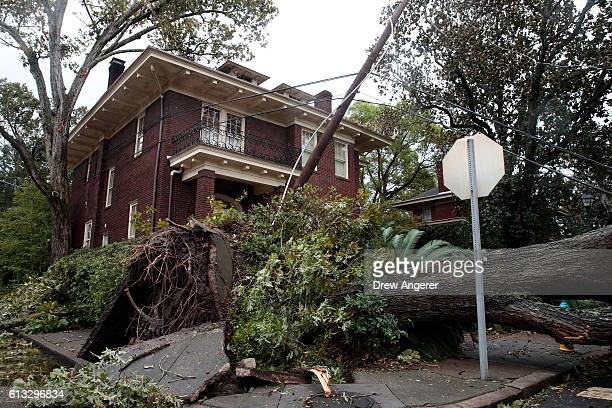 A view of downed tree and damaged power lines in a residential neighborhood October 8 2016 in Savannah Georgia Across the Southeast Over 14 million...