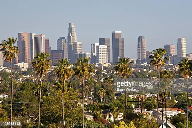 view of downtown los angeles from silver lake, los angeles, california, usa, may 2010 - cidade de los angeles imagens e fotografias de stock