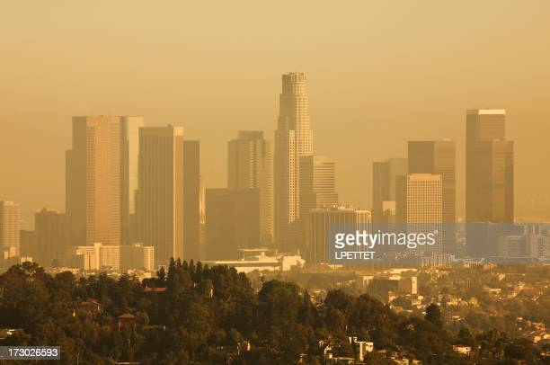 View of Downtown Los Angeles on a Smog Filled Day