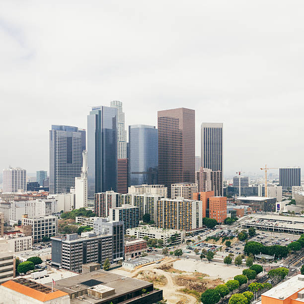 view of downtown Los Angeles with the skyscrapers