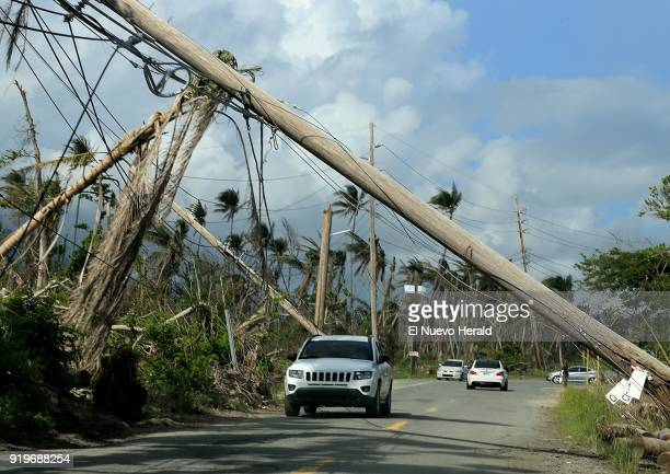 A view of electrical poles torn down along roads in Playa Punta Santiago in Humacao Puerto Rico that were destroyed by Hurricane Maria on December 3...