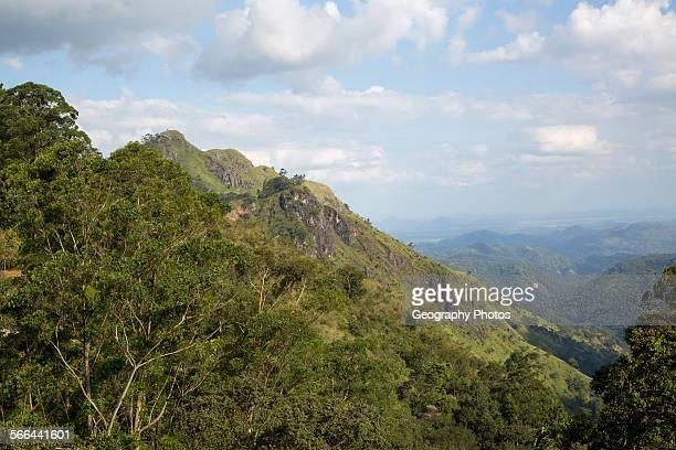 View of Ella Gap pass Ella Badulla District Uva Province Sri Lanka Asia focus on Little Adam's Peak
