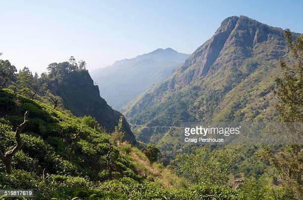 view of ella rock from little adam's peak - ella craig foto e immagini stock