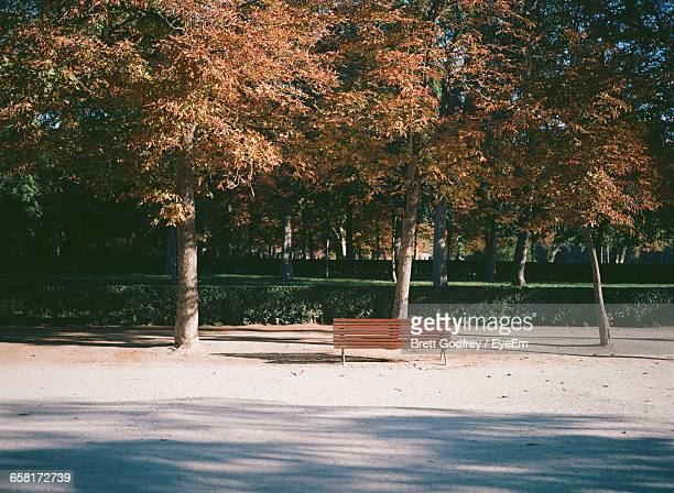 view of empty bench in park against cloudy sky - bench stock pictures, royalty-free photos & images