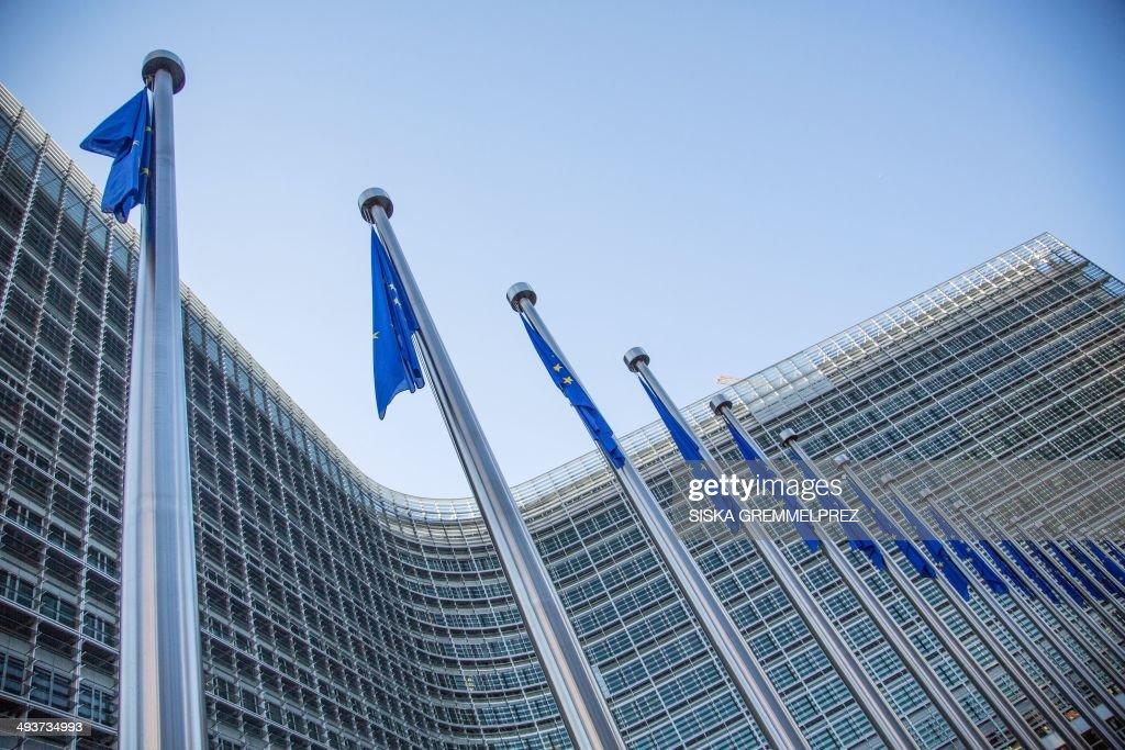 BELGIUM-EU-VOTE : News Photo
