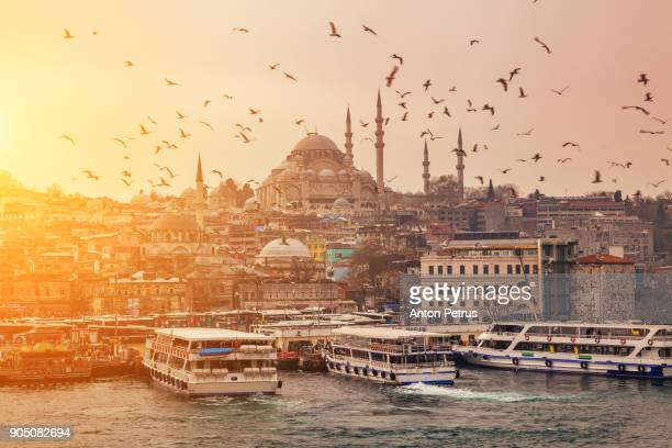 view of evening istanbul from the galata bridge - istanbul photos et images de collection