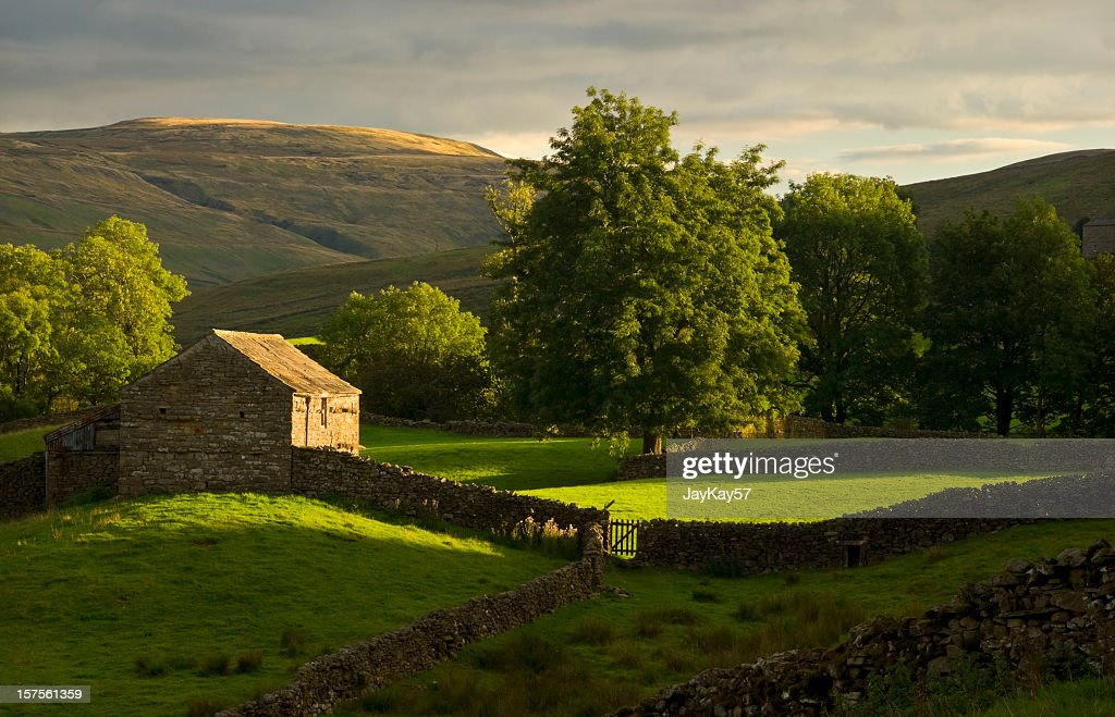 View of farmland hills in Swaledale, Yorkshire : Stock Photo