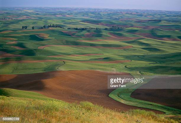 view of farmland. - spokane stock pictures, royalty-free photos & images
