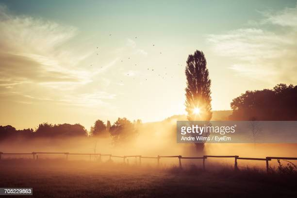 view of fence on field at sunset - andre wilms eyeem stock-fotos und bilder