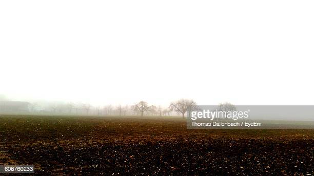 View Of Field Against Sky In Foggy Weather