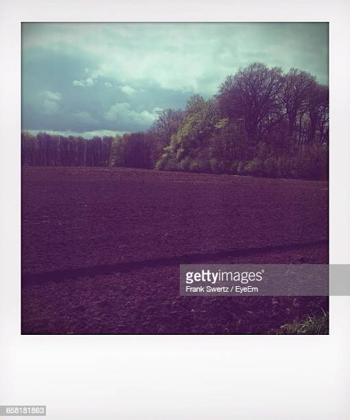 view of fields against cloudy sky - frank swertz stockfoto's en -beelden