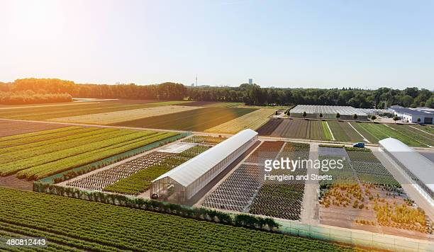 view of fields and greenhouses, munich, bavaria, germany - gewächshäuser stock-fotos und bilder