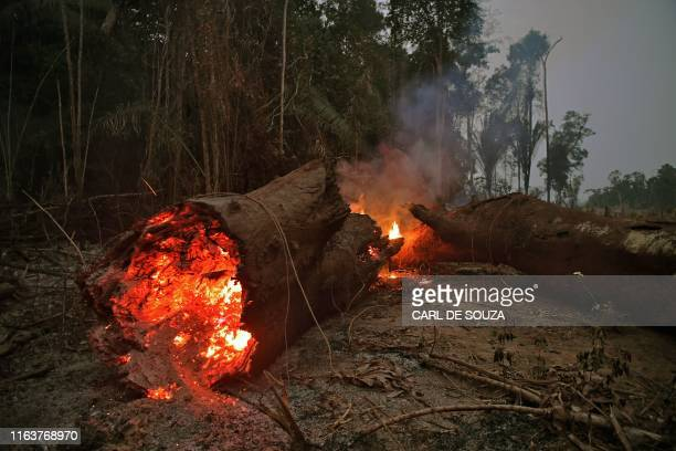 TOPSHOT View of fire in the Amazon rainforest near Abuna Rondonia state Brazil on August 24 2019 President Jair Bolsonaro authorized Friday the...