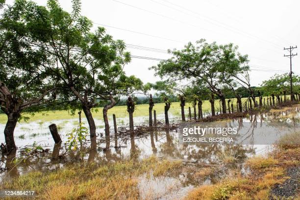 View of flooded fields in Guanacaste, Costa Rica, on August 25, 2021.