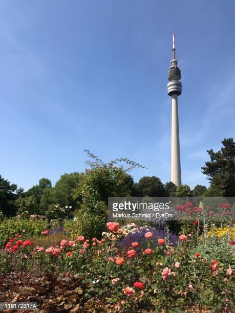 view of flowering plants against cloudy sky - dortmund stock pictures, royalty-free photos & images