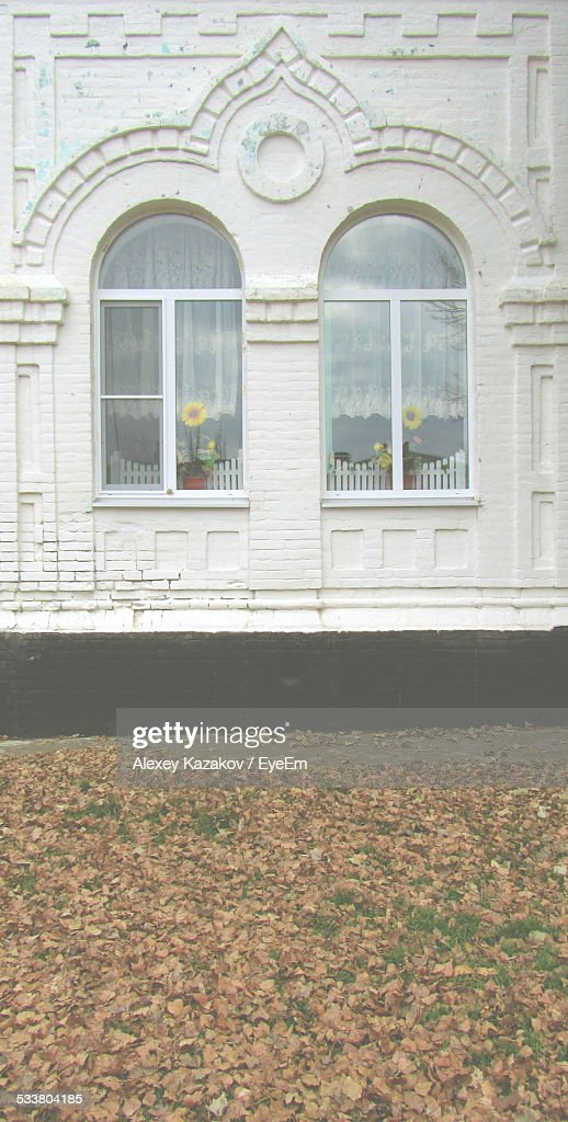 View Of Flowers In Windows : Foto stock