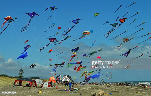 View Of Flying Kites On Beach Against Cloudy Sky
