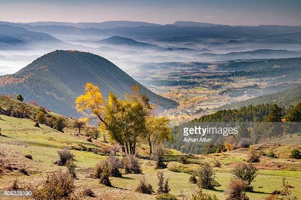 View of foggy rural landscape near lake Abant ,Bolu,Turkey