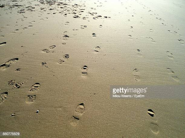 View Of Footprints On Beach