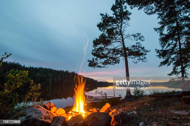 view of forest against sky at sunset - campfire stock pictures, royalty-free photos & images