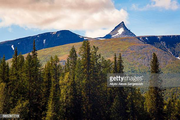 view of forest and mountain peak, ural mountains, russia - summits russia 2015 stock pictures, royalty-free photos & images