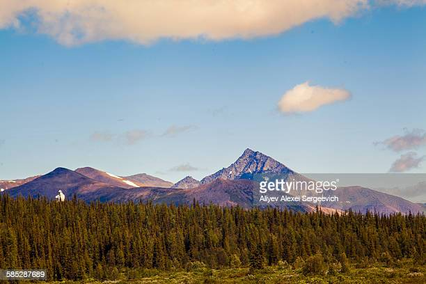view of forest and mountains, ural mountains, russia - summits russia 2015 stock pictures, royalty-free photos & images