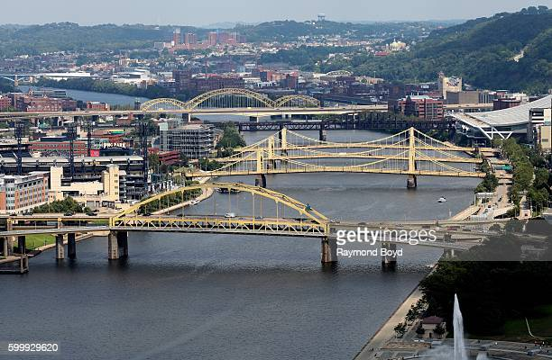 View of Fort Duquesne Bridge Roberto Clemente Bridge Andy Warhol Bridge Rachel Carson Bridge and 16th Street Bridge over the Allegheny River as...