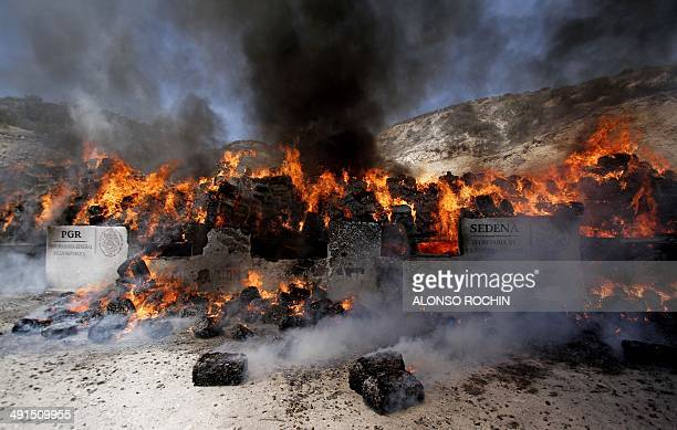 View of forty tons of marijuana seized to alleged drug cartels in a house of the bordering city of Tijuana Baja California Mexico being burnt by the...