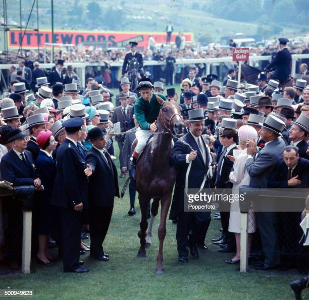 View of French racehorse Sea Bird and jockey Pat Glennon entering the winner's enclosure after winning the Derby at Epsom in June 1965