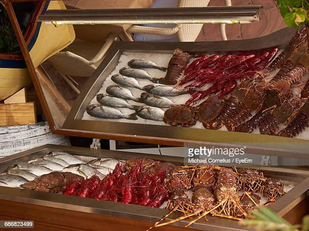 view of fresh seafood on display - eyeem collection stock photos and pictures
