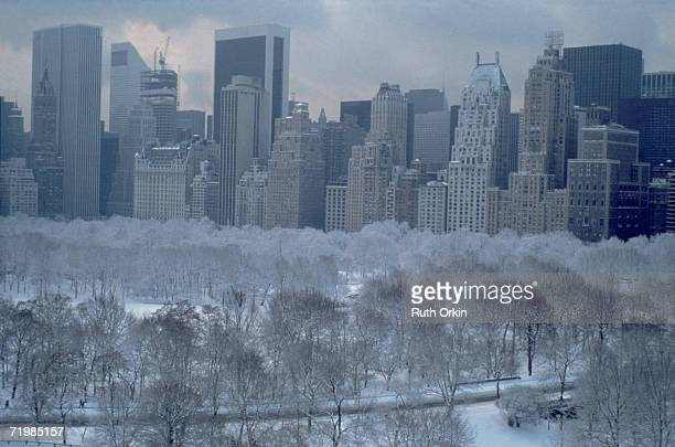 View of frost and snow on bare trees in Central Park backed by the Manhattan skyline New York New York 1983 The photograph entitled 'White Feathery...
