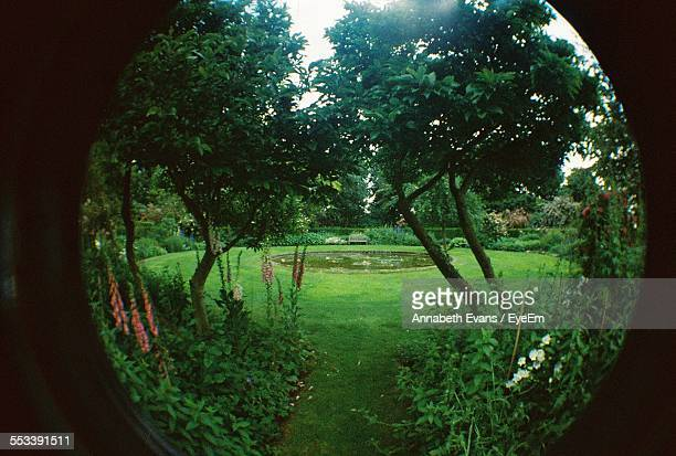 View Of Garden Through Peephole