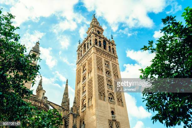 View of Giralda cathedral in Seville, Spain