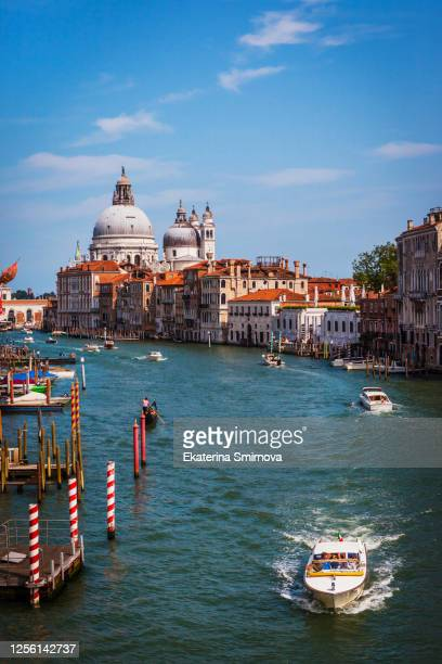 view of grand canal and basilica santa maria della salute in venice, italy - venice italy stock pictures, royalty-free photos & images