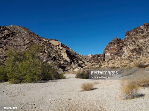 view of grapevine canyon, nevada - nevada stock pictures, royalty-free photos & images