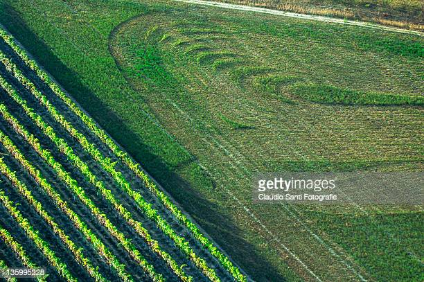 view of green landscape - modena stock pictures, royalty-free photos & images