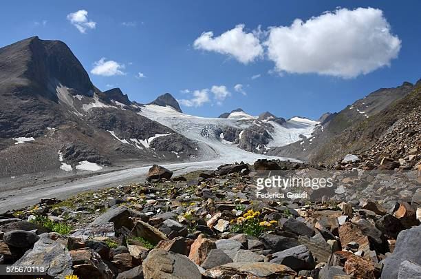 View of Gries Glacier in the Swiss Alps