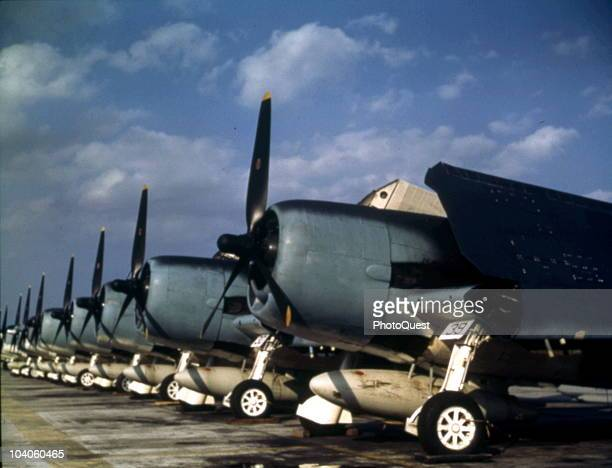 View of Grumman F6F Hellcat fighters along the flight line at an unspecified Naval Air Station early to mid 1940s