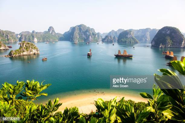 view of halong bay top of island - vietnam imagens e fotografias de stock