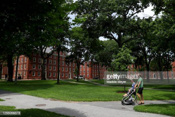 View of Harvard Yard on the campus of Harvard University on July 08, 2020 in Cambridge, Massachusetts. Harvard and Massachusetts Institute of...