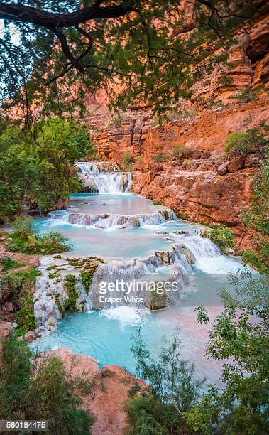 view of havasu falls. - havasu creek stock photos and pictures