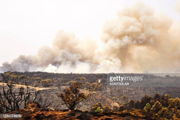 View of hills burnt by wildfires on the South West coast of Sardinia, one of Italy's islands.