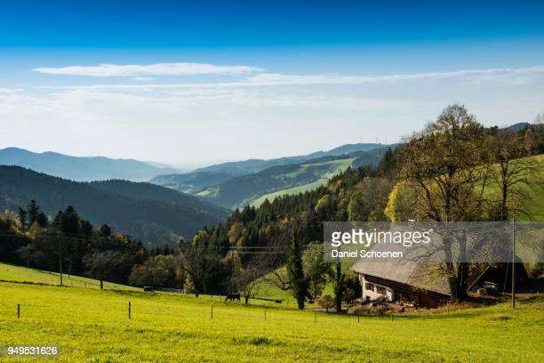 View of hilly landscape with farmhouse, Lindenberg near St Peter, Black Forest, Baden-Wuerttemberg, Germany