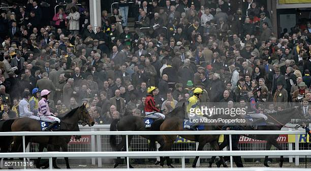 View of horses and riders being led in after competing in the Jewson Novices' Chase during the Cheltenham National Hunt Festival at Cheltenham...