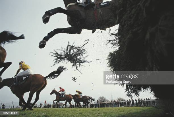 View of horses and riders clearing Becher's Brook fence during the 1993 Grand National race meeting at Aintree Racecourse near Liverpool England on...
