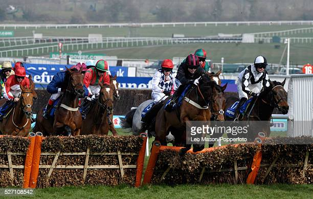 View of horses and riders competing in the Neptune Investment Management Novices' Hurdle during the Cheltenham National Hunt Festival at Cheltenham...