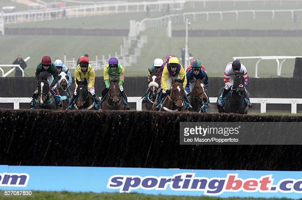 View of horses and riders competing in the sportingbetcom Queen Mother Champion Chase during the Cheltenham National Hunt Festival at Cheltenham...